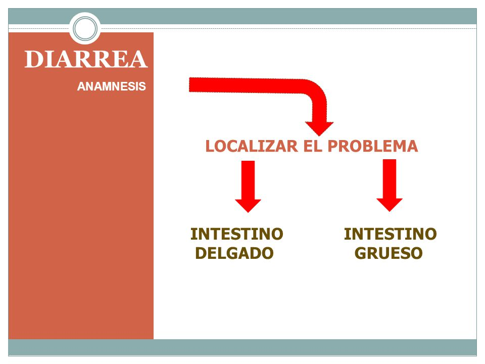 DIARREA INTESTINO INTESTINO DELGADO GRUESO LOCALIZAR EL PROBLEMA