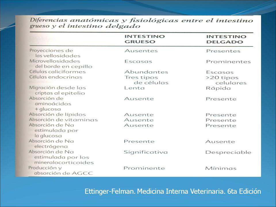 Ettinger-Felman. Medicina Interna Veterinaria. 6ta Edición