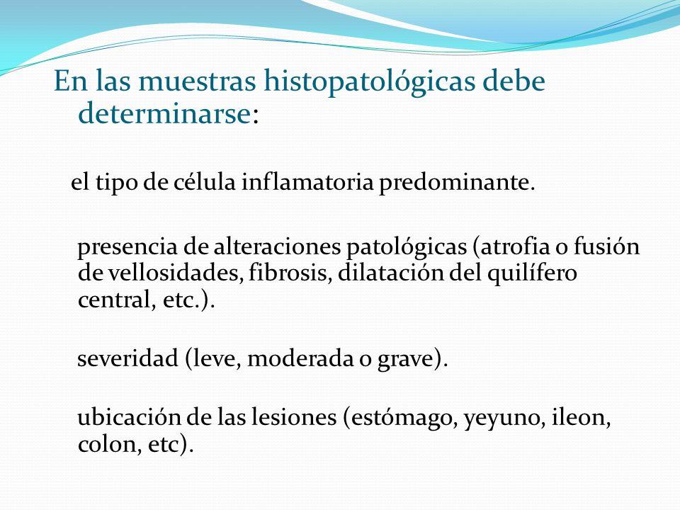 En las muestras histopatológicas debe determinarse:
