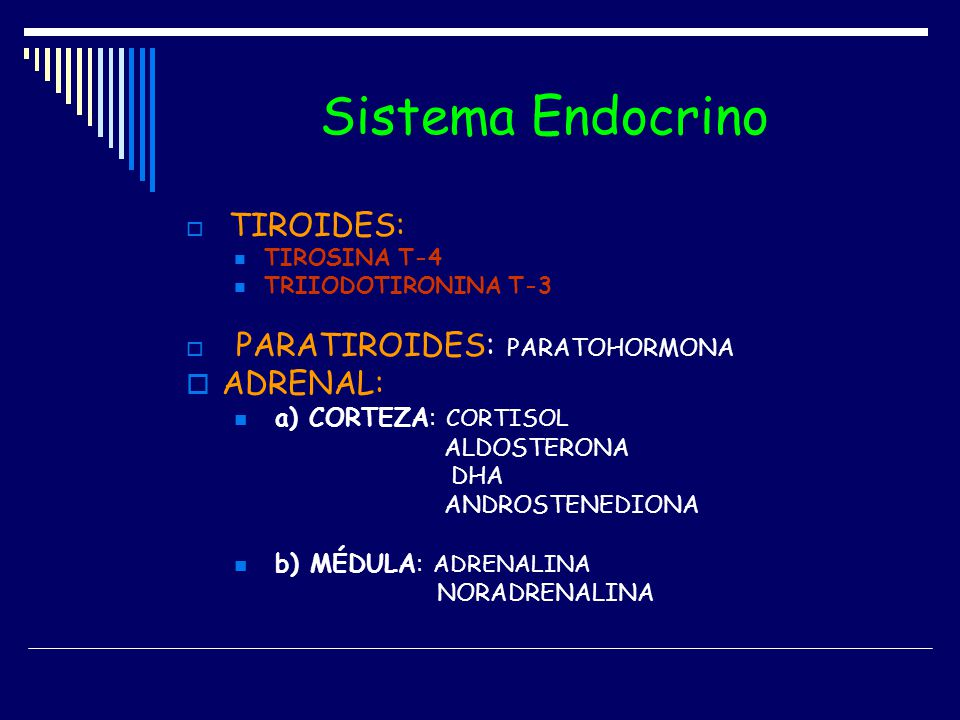 Sistema Endocrino ADRENAL: a) CORTEZA: CORTISOL b) MÉDULA: ADRENALINA