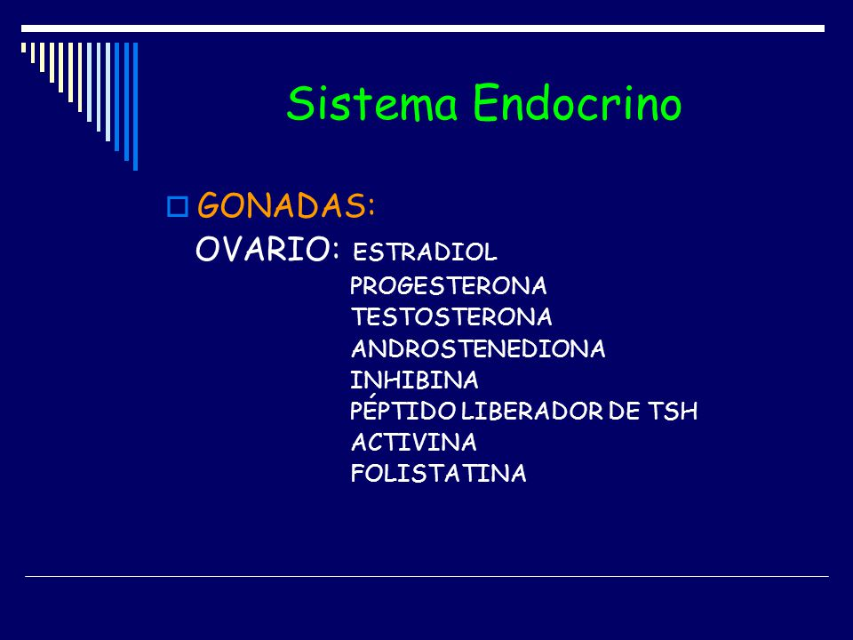 Sistema Endocrino GONADAS: OVARIO: ESTRADIOL PROGESTERONA TESTOSTERONA