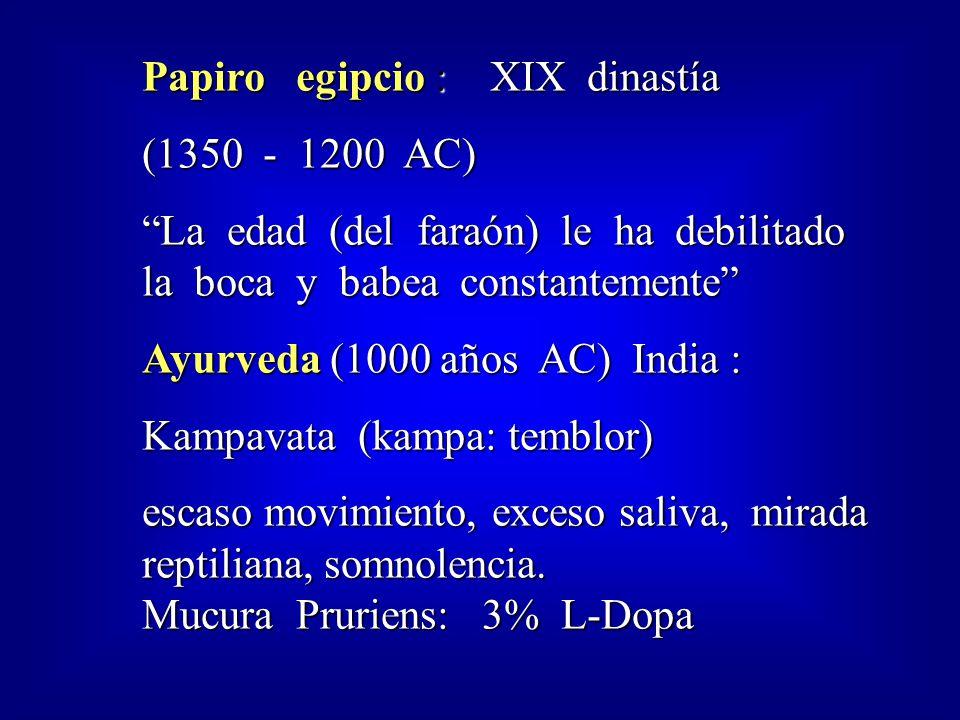 Papiro egipcio : XIX dinastía
