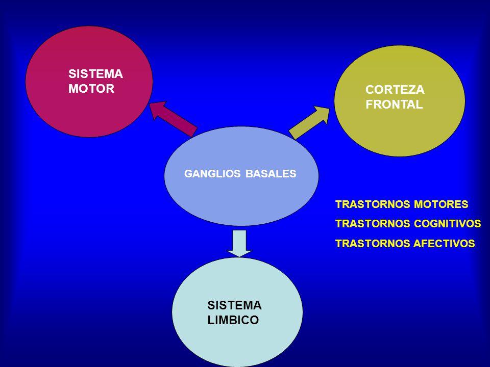 SISTEMA MOTOR CORTEZA FRONTAL SISTEMA LIMBICO GANGLIOS BASALES