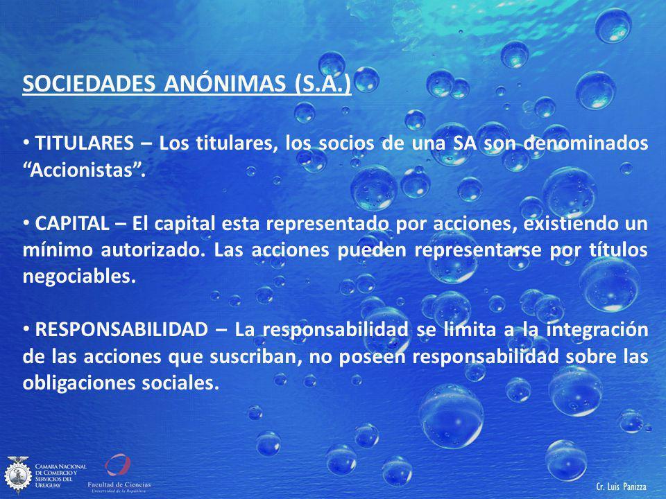 SOCIEDADES ANÓNIMAS (S.A.)