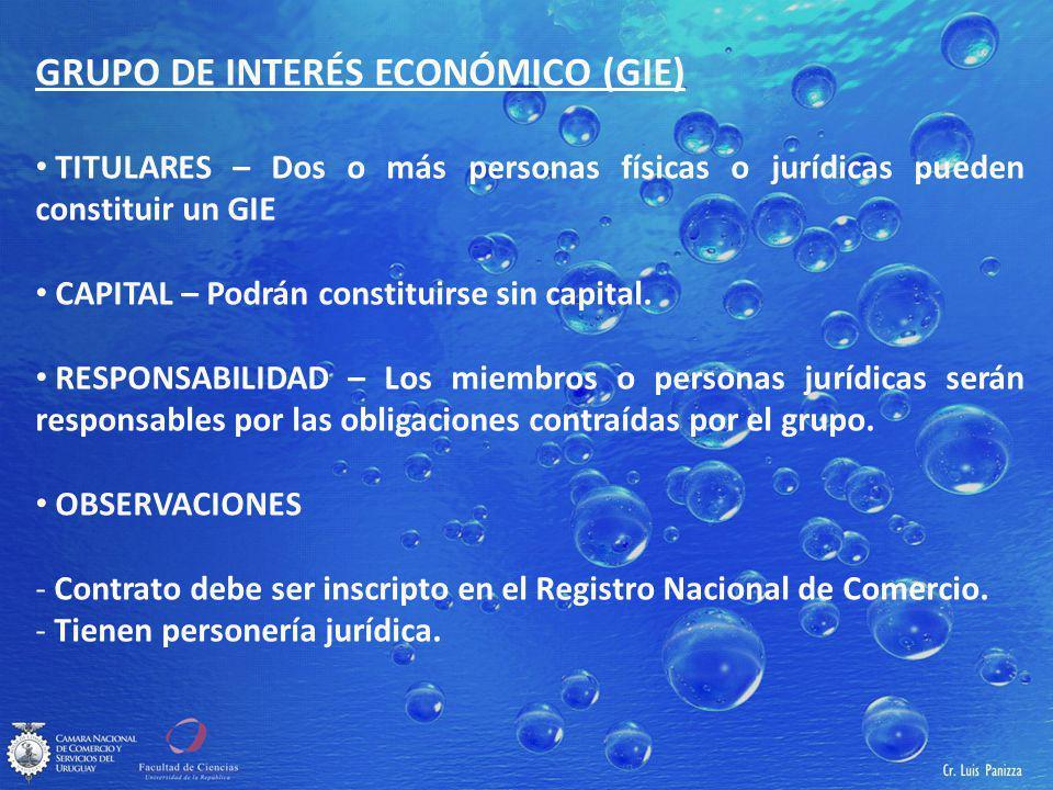 GRUPO DE INTERÉS ECONÓMICO (GIE)