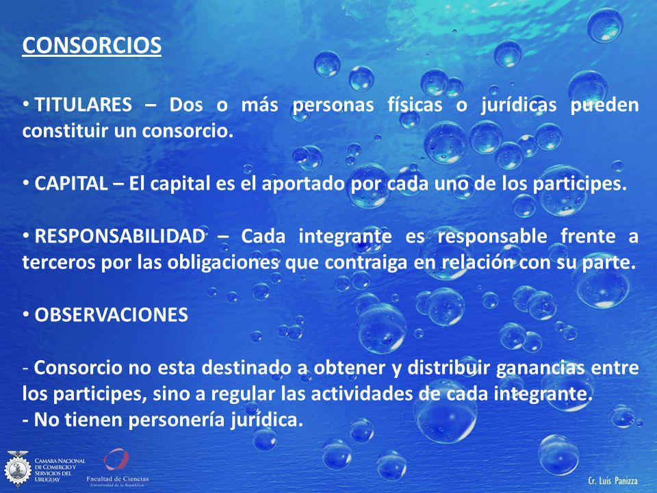 CONSORCIOS TITULARES – Dos o más personas físicas o jurídicas pueden constituir un consorcio.