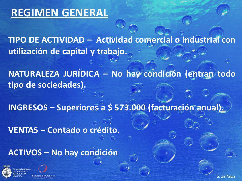 REGIMEN GENERAL TIPO DE ACTIVIDAD – Actividad comercial o industrial con utilización de capital y trabajo.
