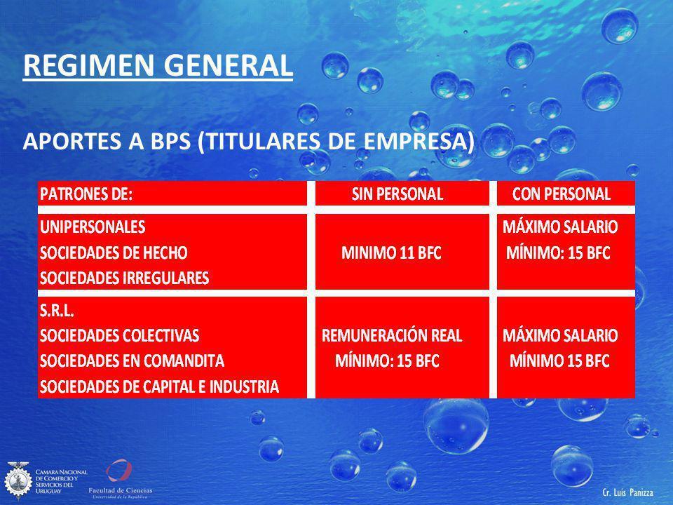 REGIMEN GENERAL APORTES A BPS (TITULARES DE EMPRESA)