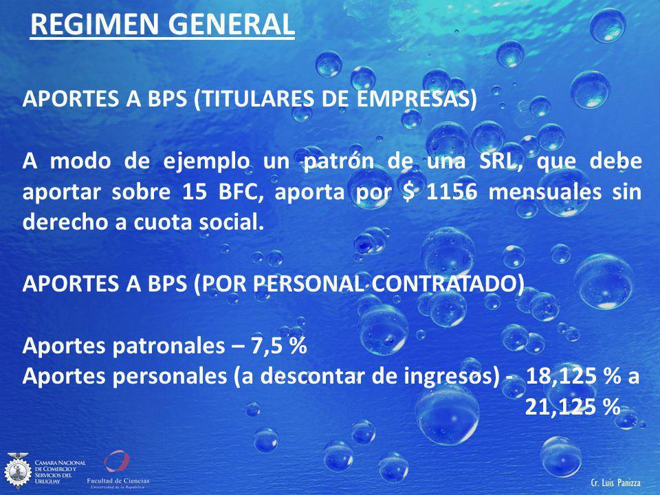 REGIMEN GENERAL APORTES A BPS (TITULARES DE EMPRESAS)