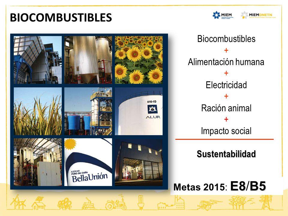 BIOCOMBUSTIBLES Biocombustibles + Alimentación humana Electricidad