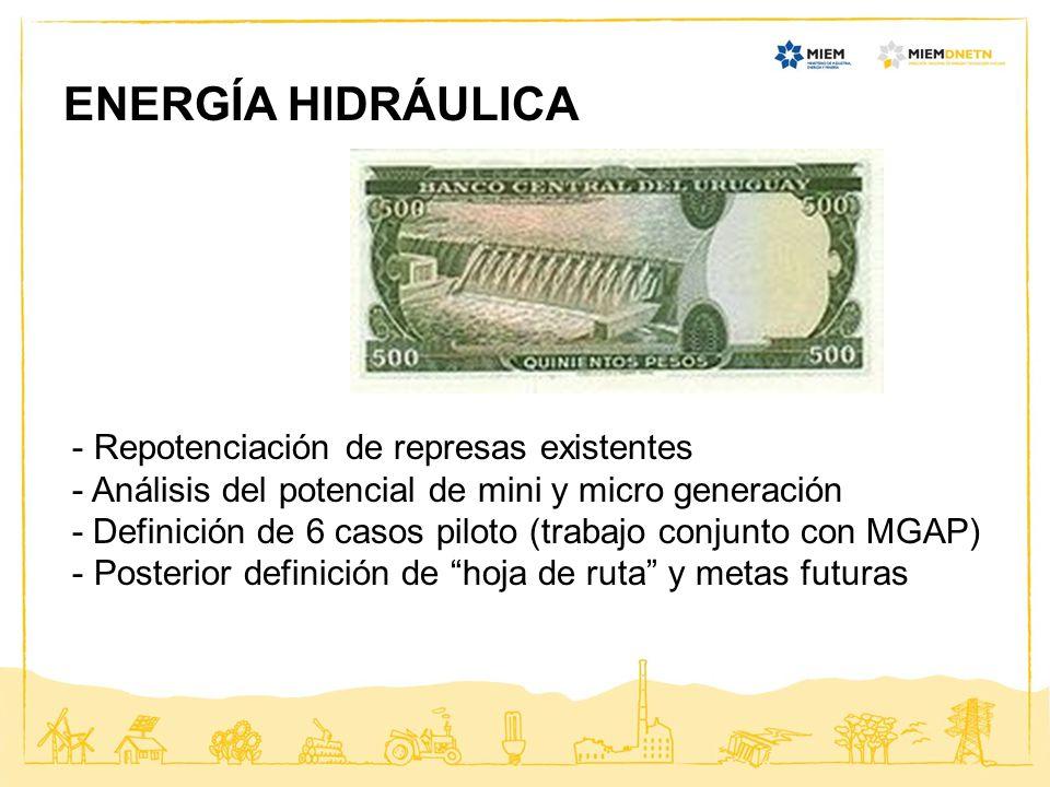 ENERGÍA HIDRÁULICA Repotenciación de represas existentes