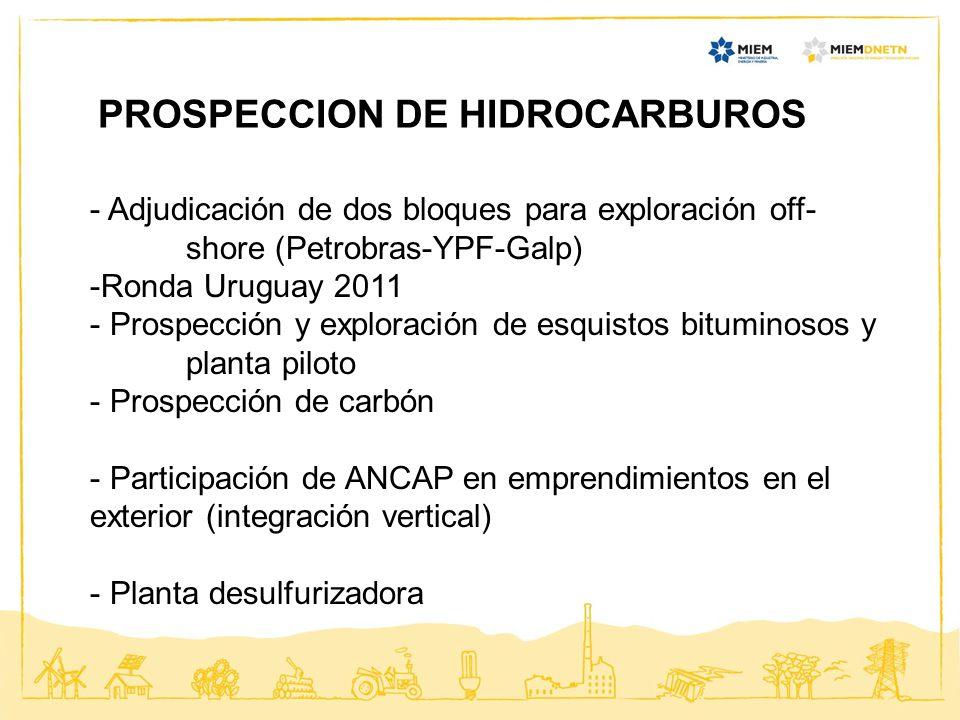 PROSPECCION DE HIDROCARBUROS