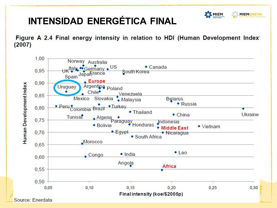 INTENSIDAD ENERGÉTICA FINAL