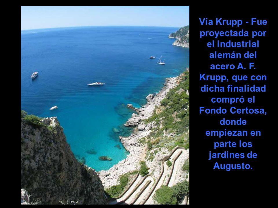 Vía Krupp - Fue proyectada por el industrial alemán del acero A. F