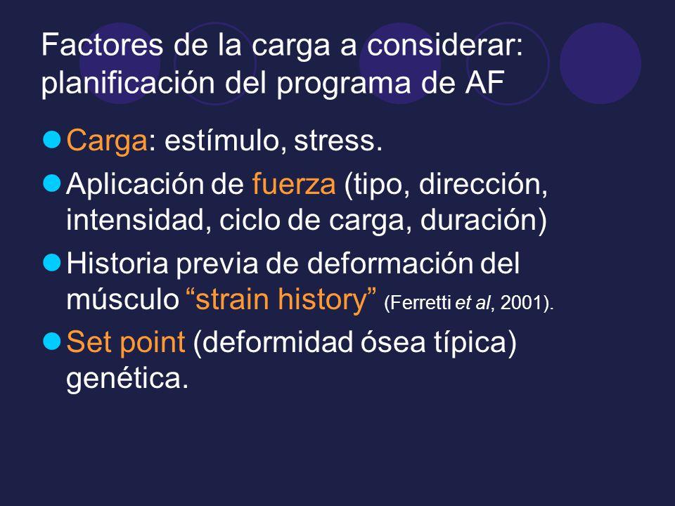 Factores de la carga a considerar: planificación del programa de AF