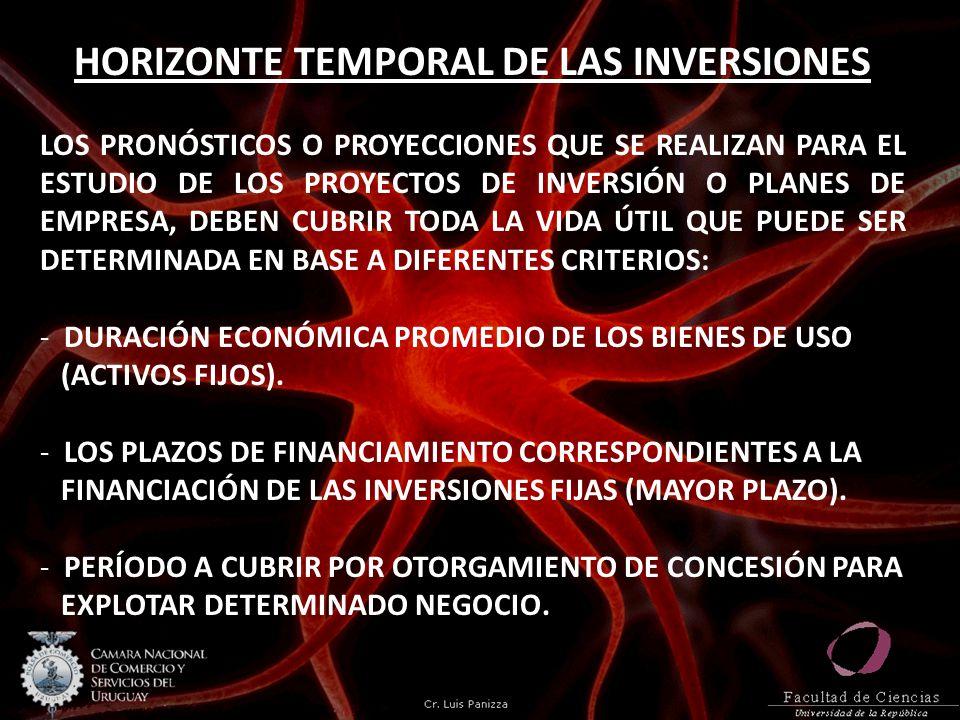 HORIZONTE TEMPORAL DE LAS INVERSIONES