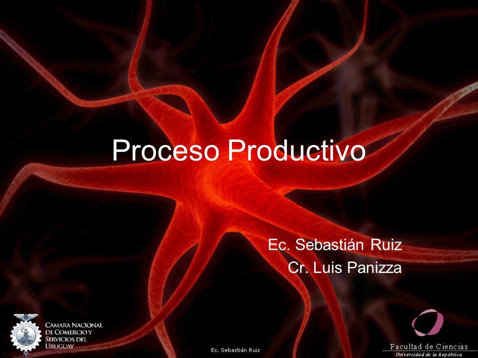 Ec. Sebastián Ruiz Cr. Luis Panizza