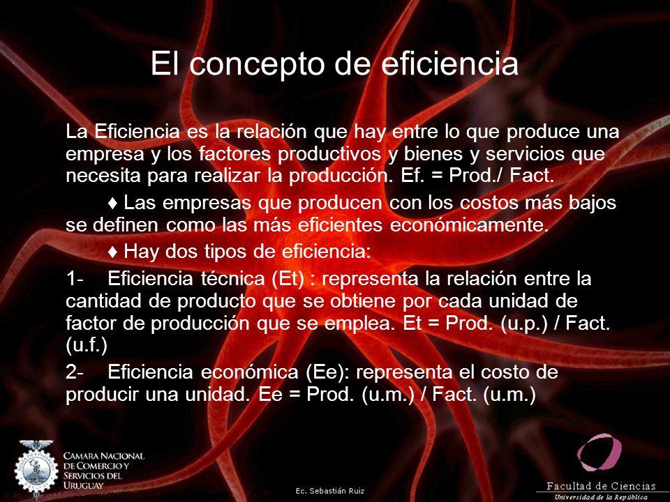 El concepto de eficiencia