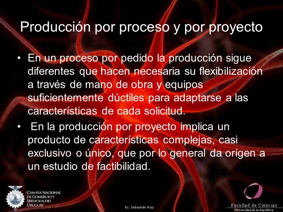 Producción por proceso y por proyecto