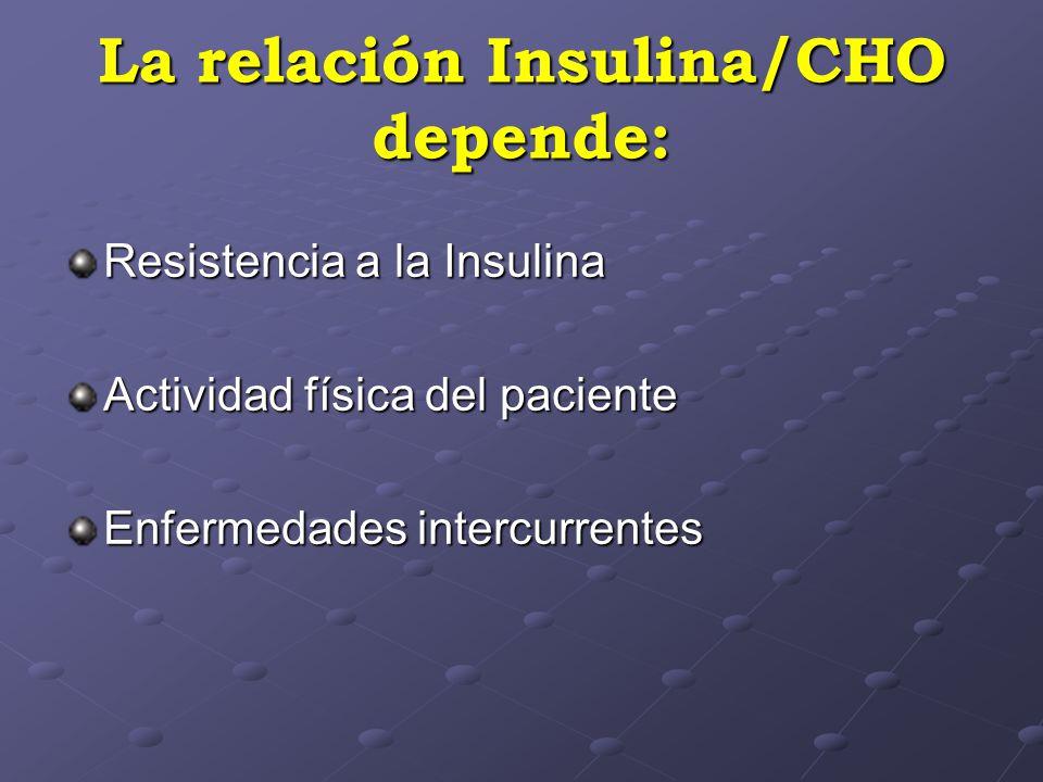 La relación Insulina/CHO depende: