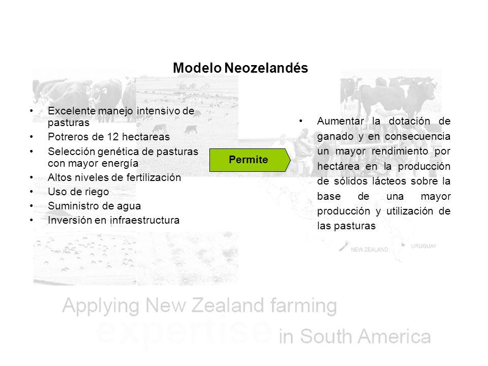 Modelo Neozelandés Excelente manejo intensivo de pasturas