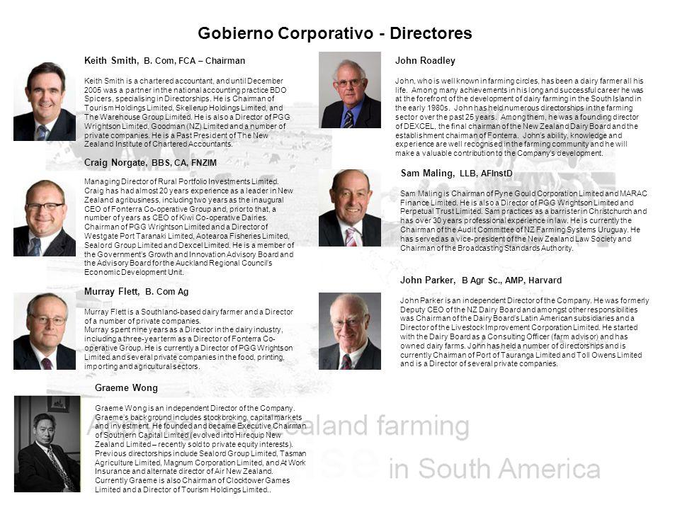 Gobierno Corporativo - Directores