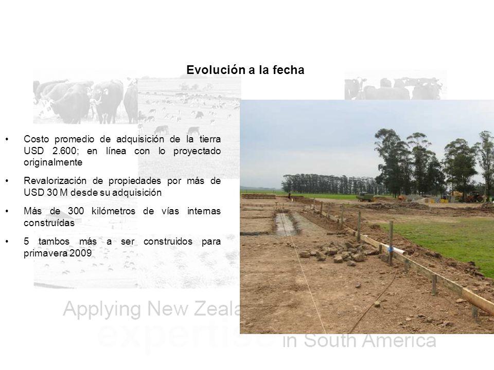 Evolución a la fecha Costo promedio de adquisición de la tierra USD 2.600; en línea con lo proyectado originalmente.