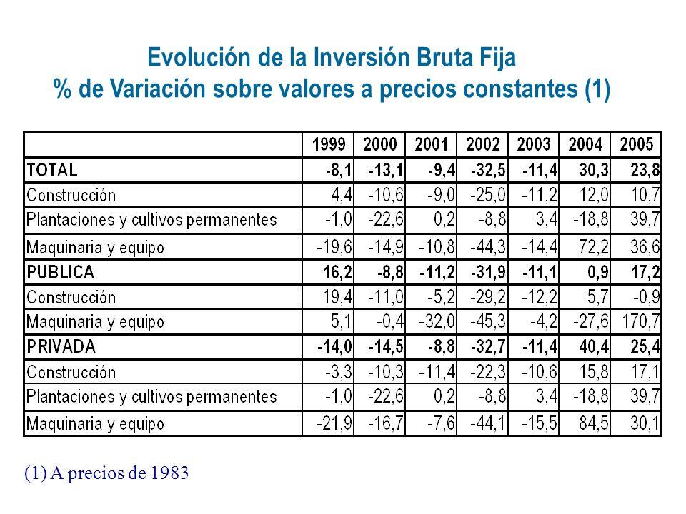 Evolución de la Inversión Bruta Fija