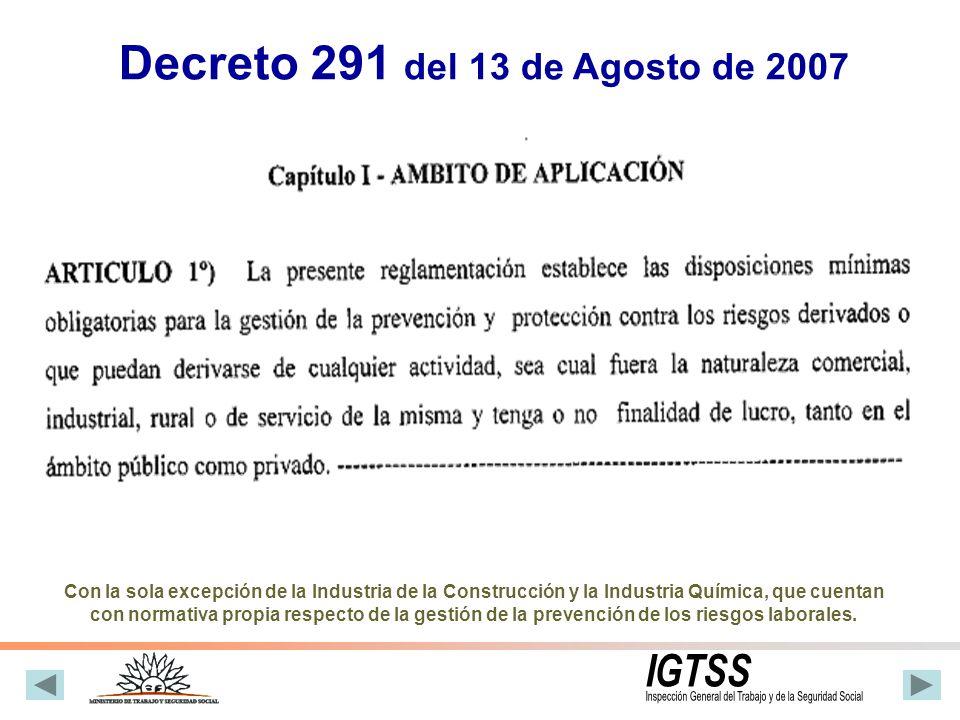 Decreto 291 del 13 de Agosto de 2007