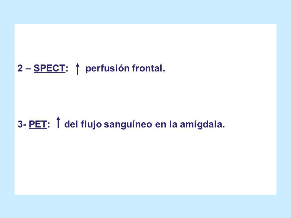 2 – SPECT: perfusión frontal.