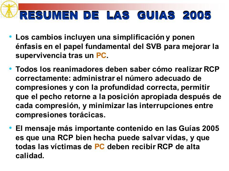 RESUMEN DE LAS GUIAS 2005