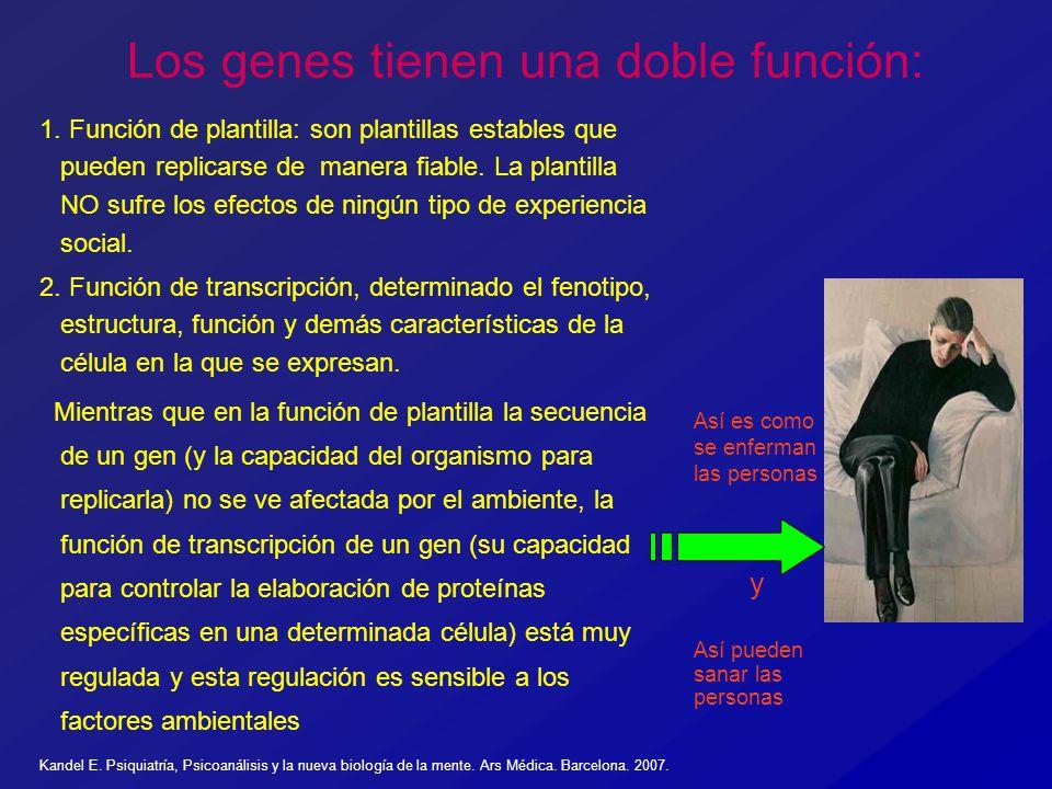 Los genes tienen una doble función: