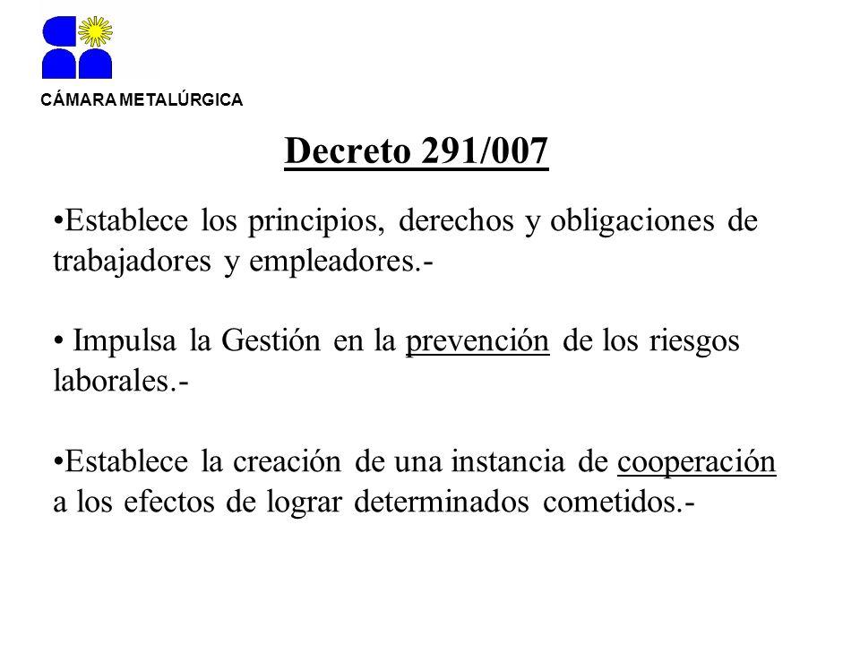 CÁMARA METALÚRGICA Decreto 291/007. Establece los principios, derechos y obligaciones de trabajadores y empleadores.-