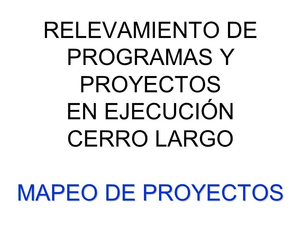 RELEVAMIENTO DE PROGRAMAS Y PROYECTOS EN EJECUCIÓN CERRO LARGO MAPEO DE PROYECTOS