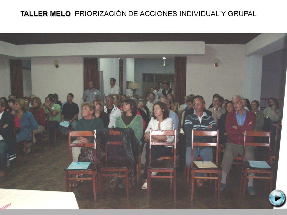 TALLER MELO PRIORIZACIÓN DE ACCIONES INDIVIDUAL Y GRUPAL