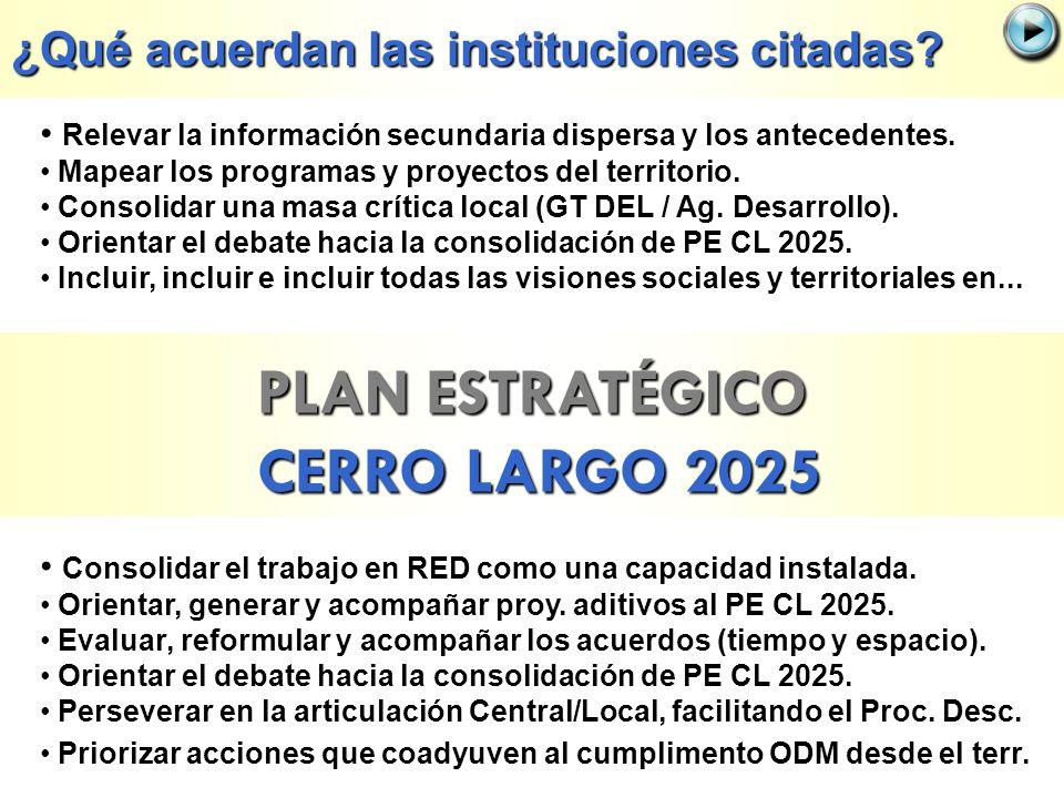 PLAN ESTRATÉGICO CERRO LARGO 2025