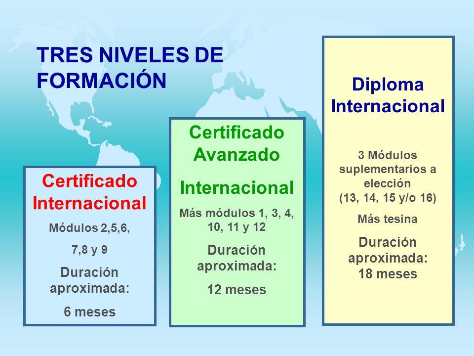 TRES NIVELES DE FORMACIÓN