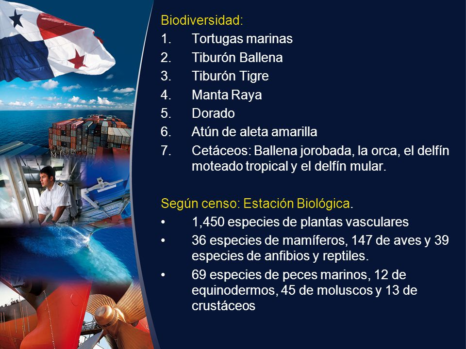 Biodiversidad: Tortugas marinas. Tiburón Ballena. Tiburón Tigre. Manta Raya. Dorado. Atún de aleta amarilla.