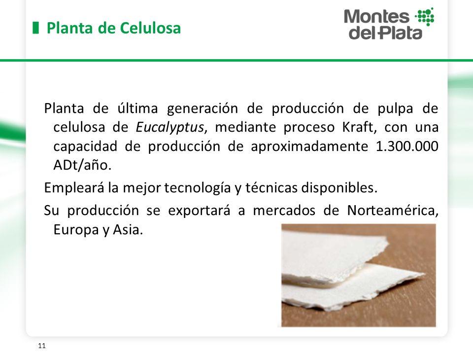 Planta de Celulosa