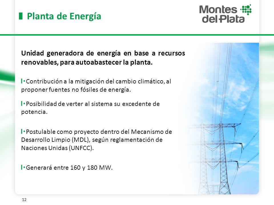 Planta de Energía Unidad generadora de energía en base a recursos renovables, para autoabastecer la planta.