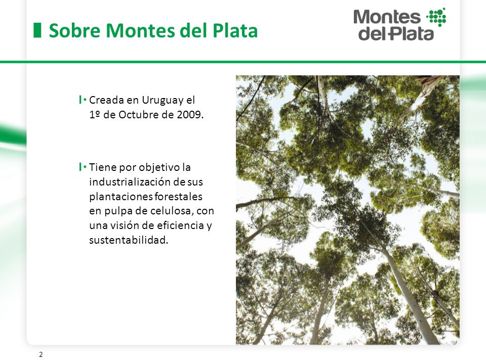 Sobre Montes del Plata Creada en Uruguay el 1º de Octubre de 2009.