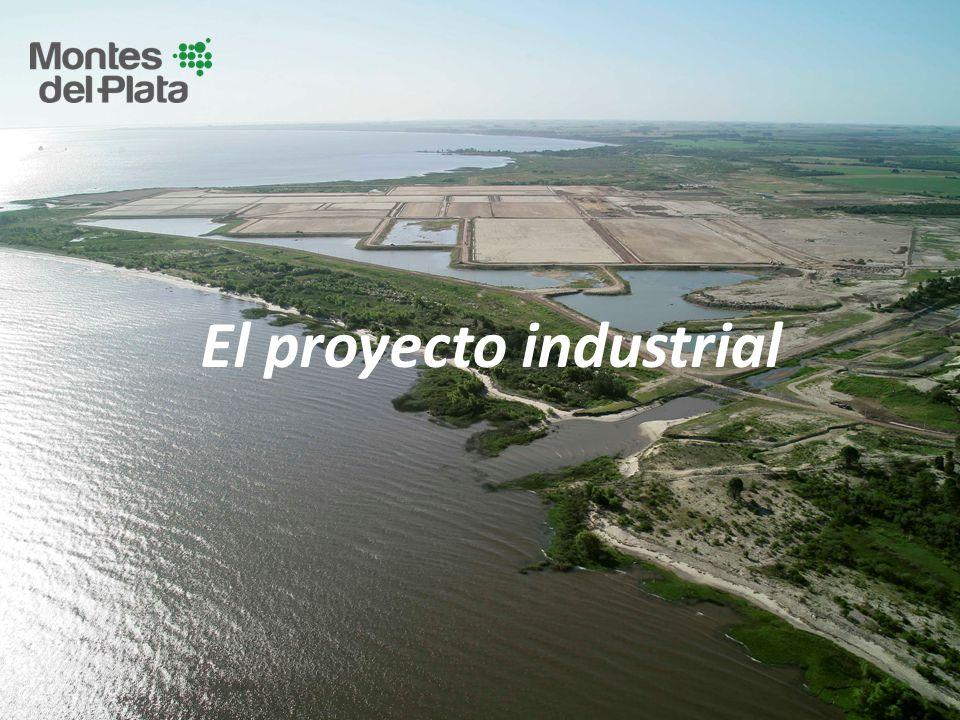El proyecto industrial