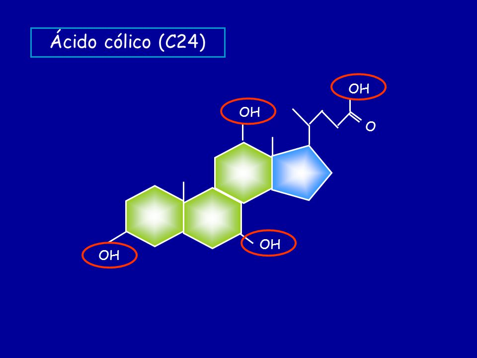 Ácido cólico (C24) OH O