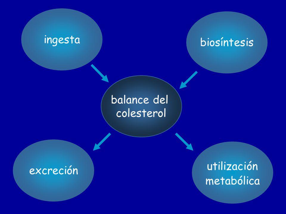ingesta biosíntesis balance del colesterol excreción utilización metabólica