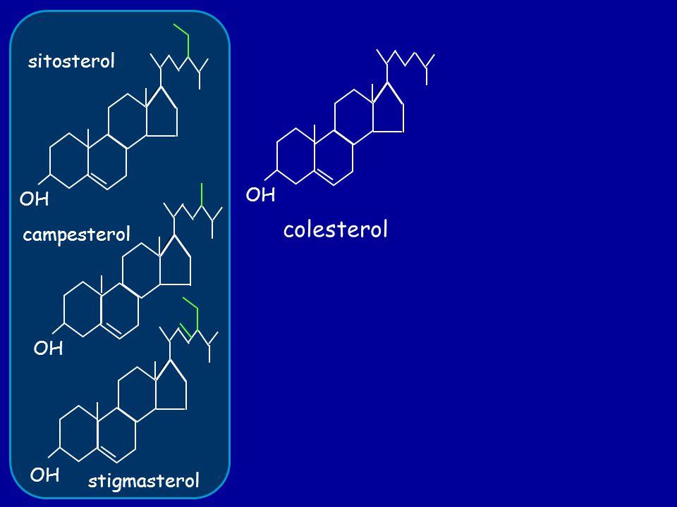 OH sitosterol campesterol stigmasterol OH colesterol