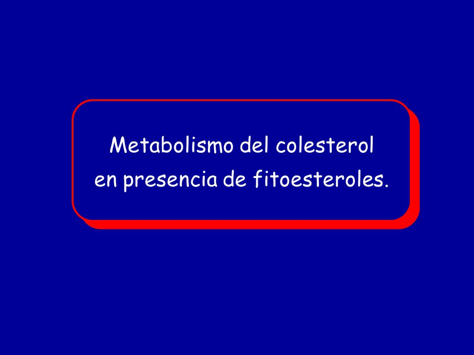 Metabolismo del colesterol en presencia de fitoesteroles.