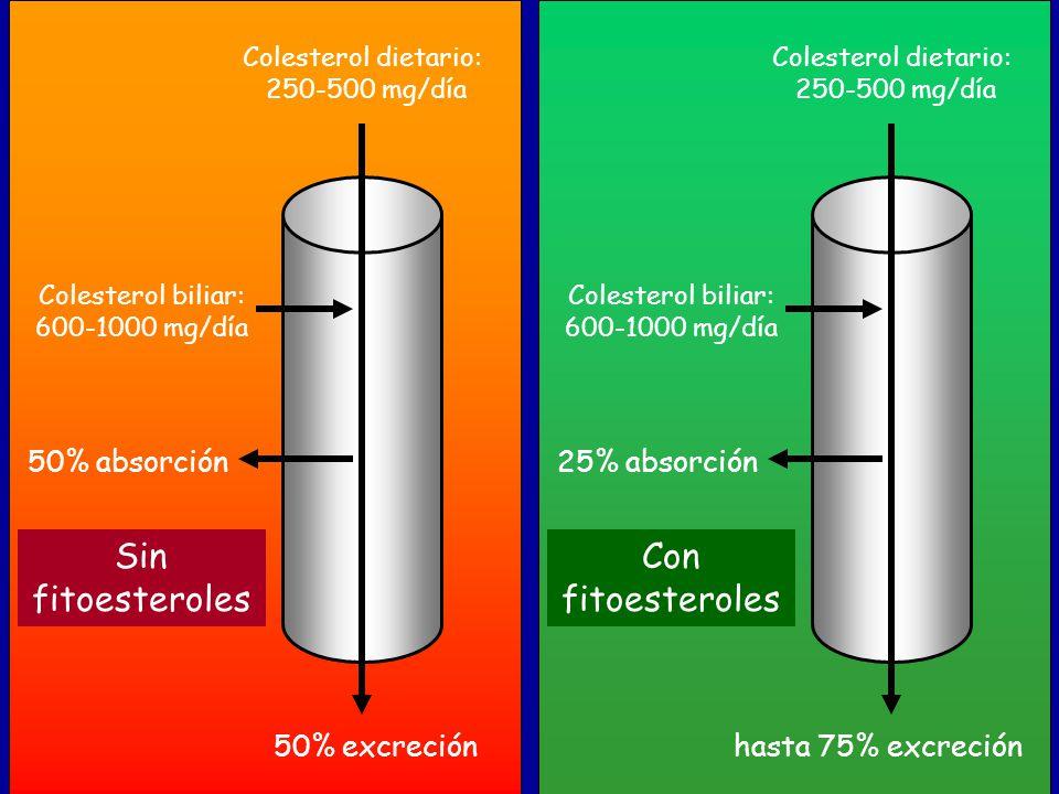 Sin fitoesteroles Con fitoesteroles 50% absorción 25% absorción