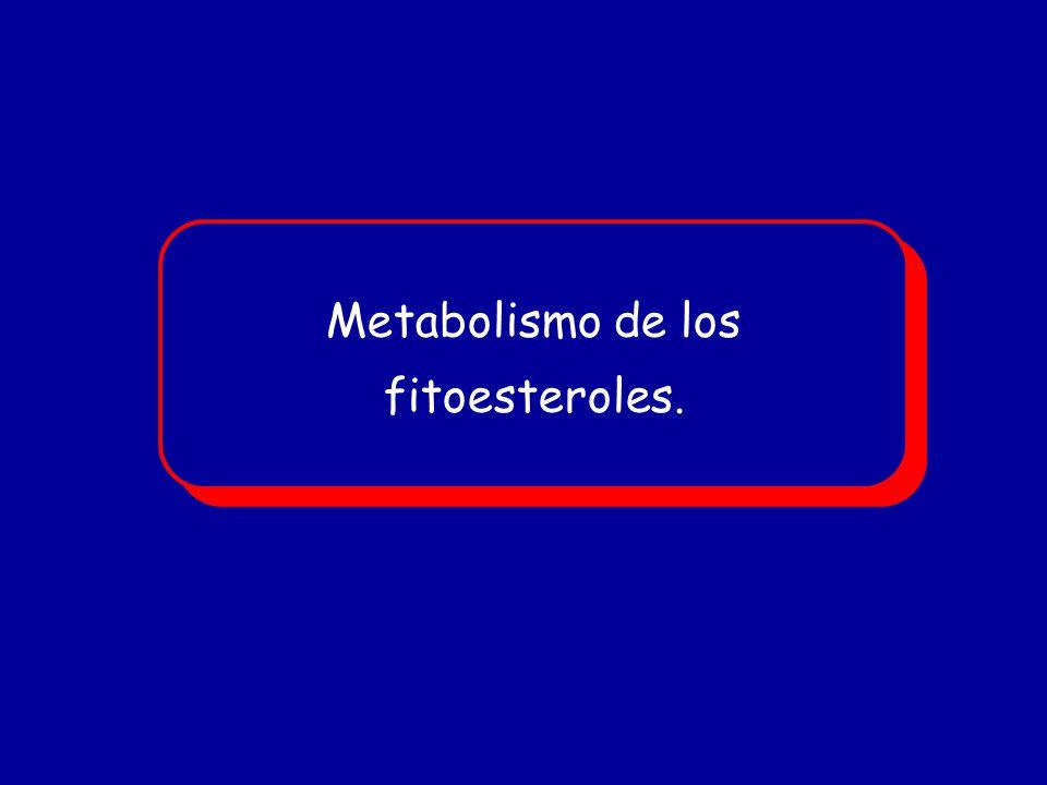 Metabolismo de los fitoesteroles.