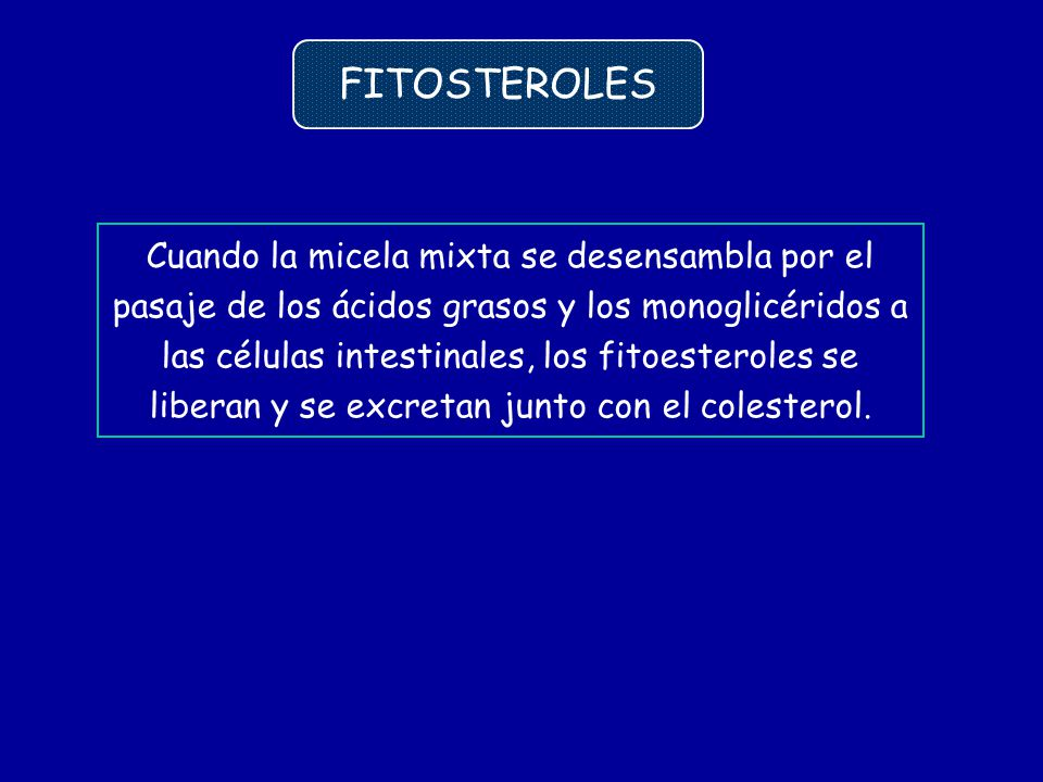FITOSTEROLES