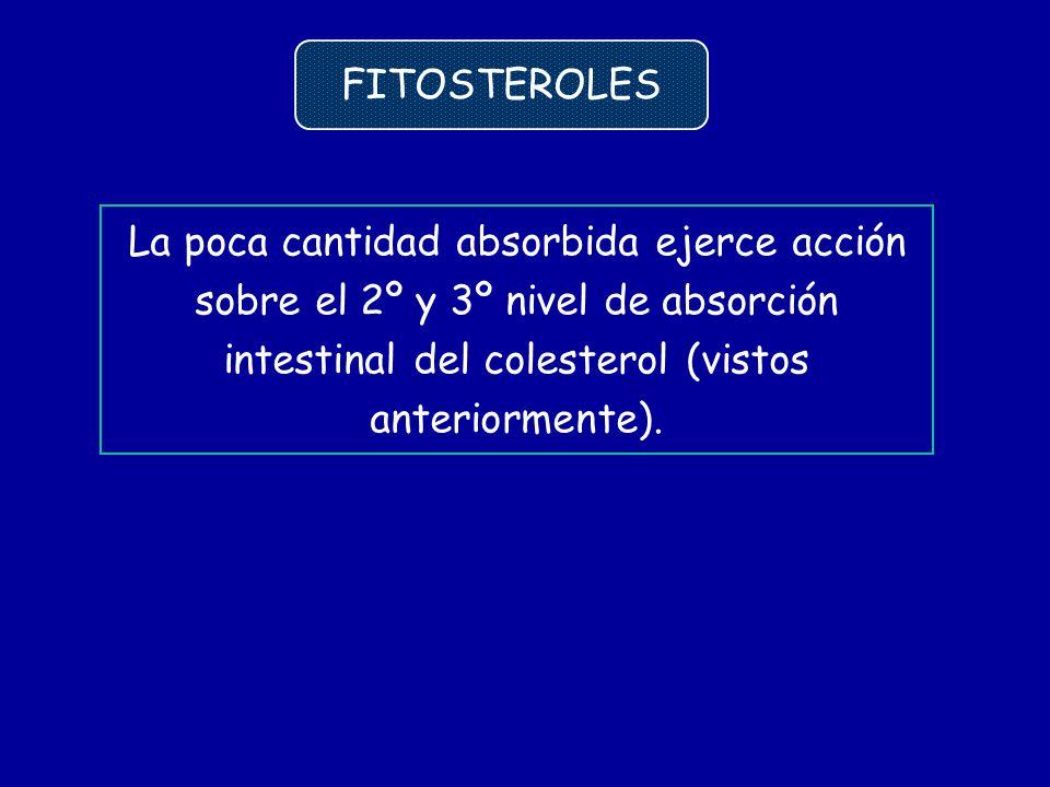 FITOSTEROLES La poca cantidad absorbida ejerce acción sobre el 2º y 3º nivel de absorción intestinal del colesterol (vistos anteriormente).
